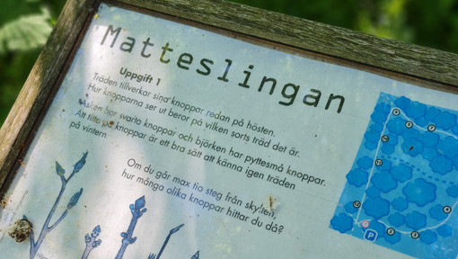Trelleborgs stadspark